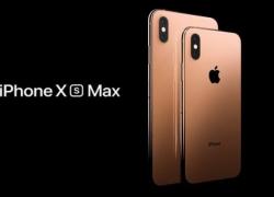 Review iPhone XS Max: Usung Dual SIM Card dan Layar Besar 6,5 Inchi