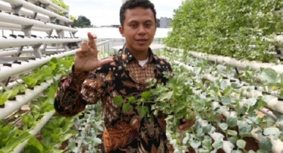 XL Smart Hydroponics untuk Urban Farming