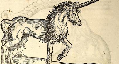 Tak Hanya Unicorn, Ini 4 Makhluk Mitos Yang Pernah Dikuak Sains