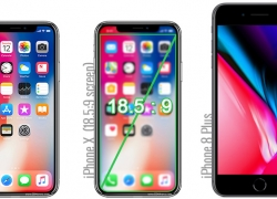 Yuk Bandingkan Besar Layar iPhone X dan iPhone 8 Plus