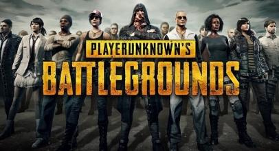 Resmi Hadir di Indonesia, Berikut Cara Download Game PUBG Lite