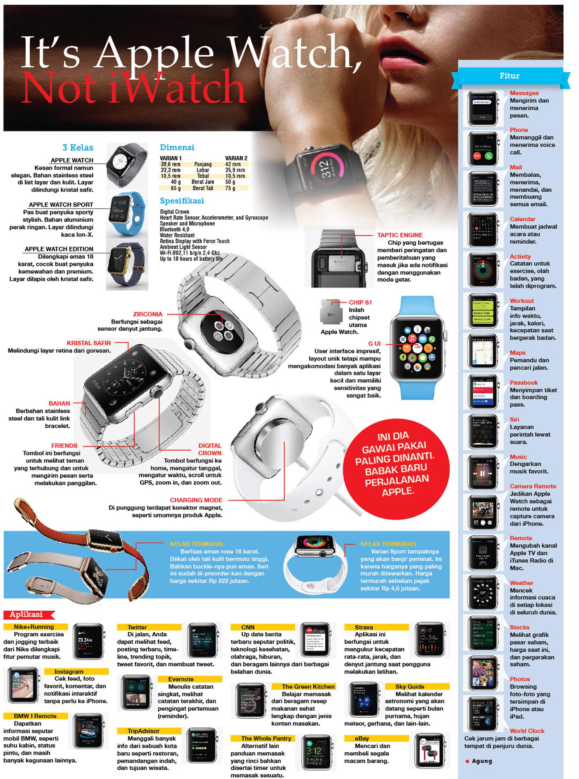 Infografis: Apple Watch dan Fungsi-fungsinya